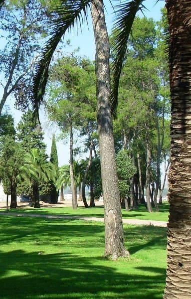Agencia SEM Badajoz